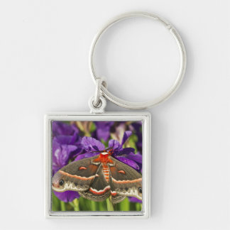Cecropia Moth in flower garden Silver-Colored Square Key Ring