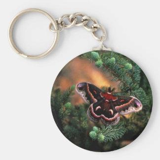 Cecropia moth key ring