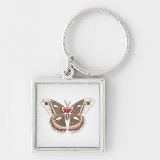 Cecropia Moth Keychain