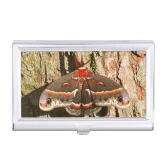 Cecropia Moth on tree trunk Business Card Holder