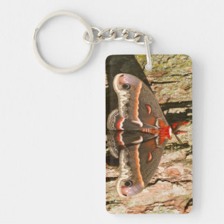 Cecropia Moth on tree trunk Double-Sided Rectangular Acrylic Key Ring