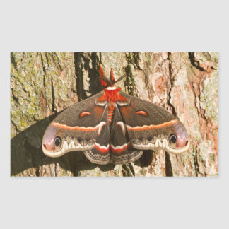 Cecropia Moth on tree trunk Rectangular Sticker