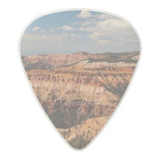 Cedar Breaks National Monument, Utah Acetal Guitar Pick