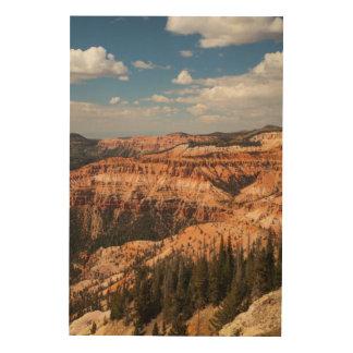 Cedar Breaks National Monument, Utah Wood Wall Art