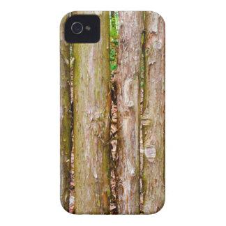 Cedar Fence iPhone 4 Cases