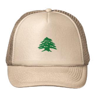 Cedar, Lebanon Cap