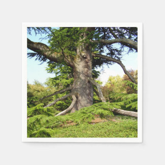 Cedar-of-Lebanon Tree Paper Napkins Paper Napkin