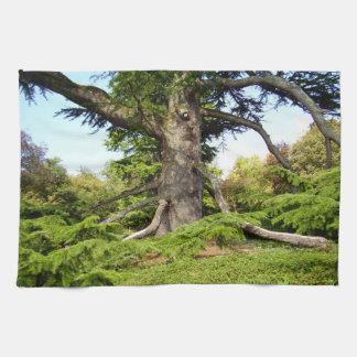 Cedar-of-Lebanon Tree Tea Towel