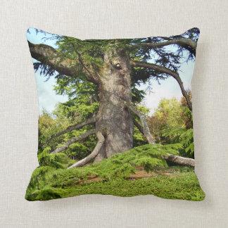 Cedar-of-Lebanon Tree Throw Cushion