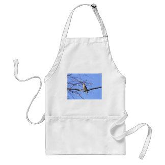 Cedar waxwing bird watching design standard apron