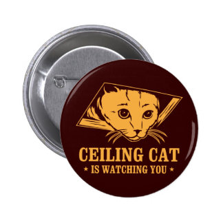 Ceiling Cat is Watching You Pinback Buttons