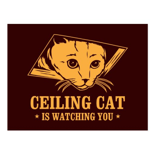Ceiling Cat is Watching You Postcards