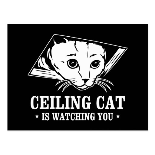 Ceiling Cat is Watching You Post Cards