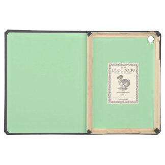 Celadon iPad Air Case