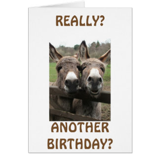 CELEBRATE BIRTHDAY TO GET ATTENTION ASKS MULES? GREETING CARD