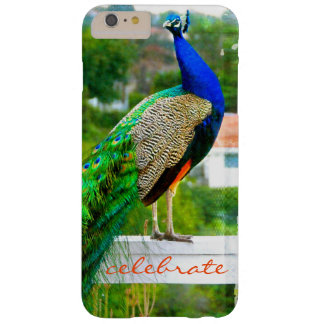 """Celebrate"" Cute, Stylish Blue Green Peacock Photo Barely There iPhone 6 Plus Case"