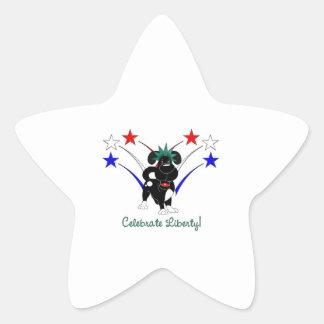 Celebrate Liberty - Fireworks Stickers