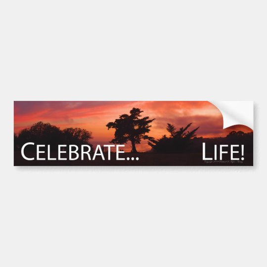 Celebrate... Life Bumper Sticker