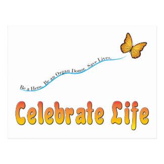 Celebrate Life Butterfly Postcard