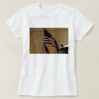 ,  celebrate, presidents day T-Shirt
