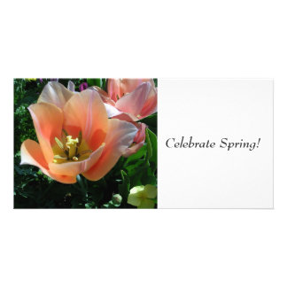 Celebrate Spring! Picture Card