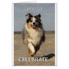 Celebration Card with Australian Shepherd