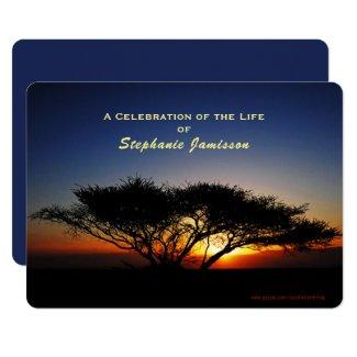 Celebration of Life, Lone Acacia Tree at Sunrise Invitation