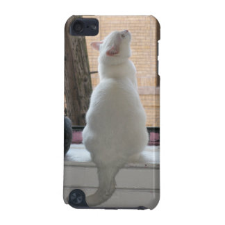 Celeste Cat iPod Case iPod Touch (5th Generation) Cases