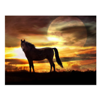 Celestial Horse and Moon Postcard