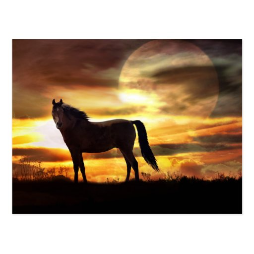 Celestial Horse and Moon Postcard