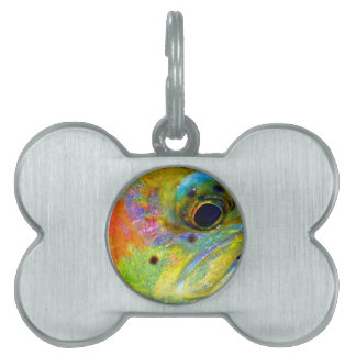 Celestial Rainbow Pet Tag