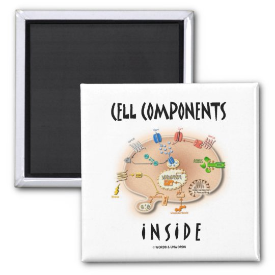 Cell Components Inside Magnet
