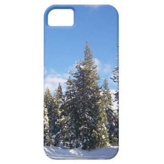 Cell phone case iPhone 5 case