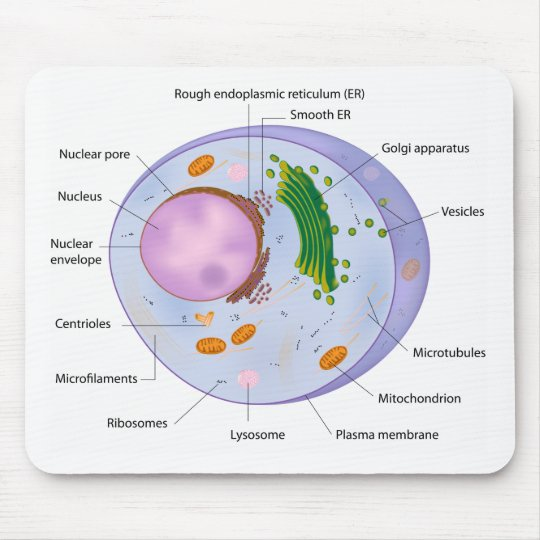 Cell structure mousepad
