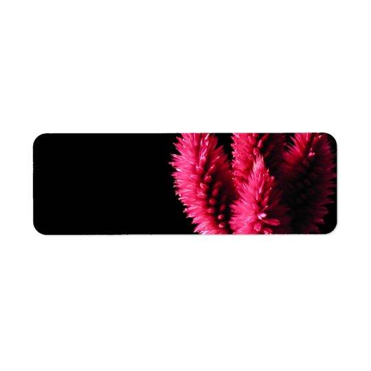 Celosia Caracas. Cockscombs. Pink Flowers. Return Address Label
