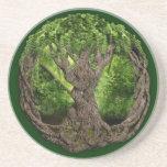 Celtic Tree Of Life Drink Coaster