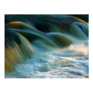 Cenarth Falls Postcard