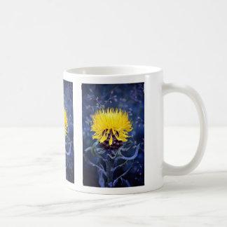 Centaurea macroephala, globe knapweed mug