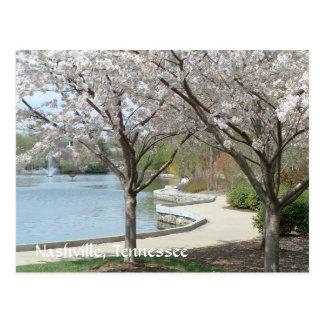 Centennial Park in Bloom Postcard