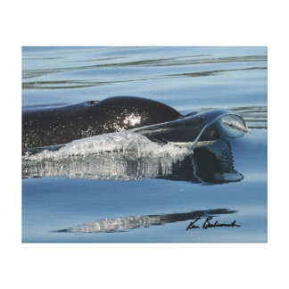 Center for Whale Research - Canvas print