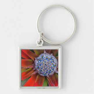Center of a blooming agave - San Francisco Keychain