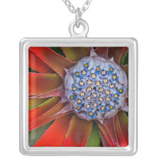 Center of a blooming agave - San Francisco Silver Plated Necklace