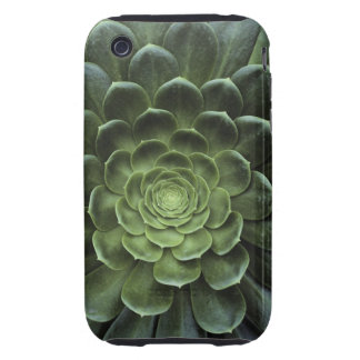 Center of Cactus Tough iPhone 3 Covers