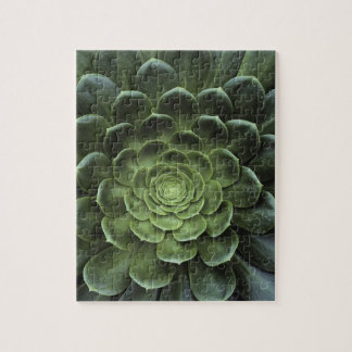 Center of Cactus Jigsaw Puzzle