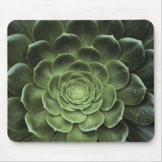 Center of Cactus Mouse Mat