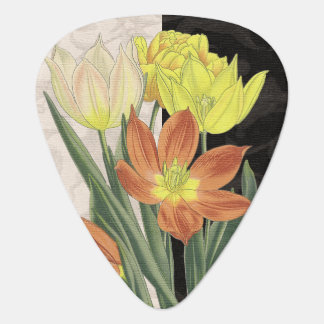 Centerpiece II Plectrum
