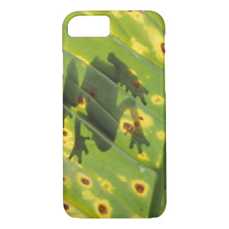 CENTRAL AMERICA, Costa Rica, Back-lit frog on iPhone 8/7 Case