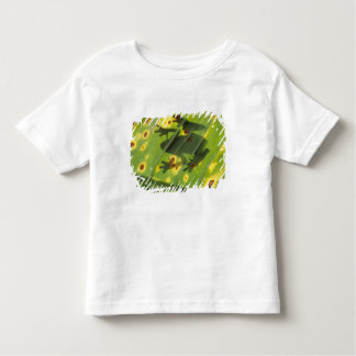 CENTRAL AMERICA, Costa Rica, Back-lit frog on Toddler T-Shirt