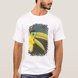 Central America, Costa Rica. Keel-billed T-Shirt