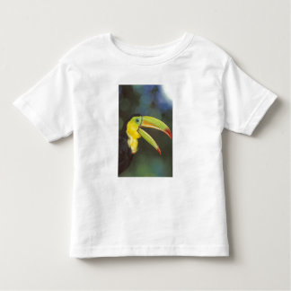 Central America, Costa Rica. Keel-billed Toddler T-Shirt